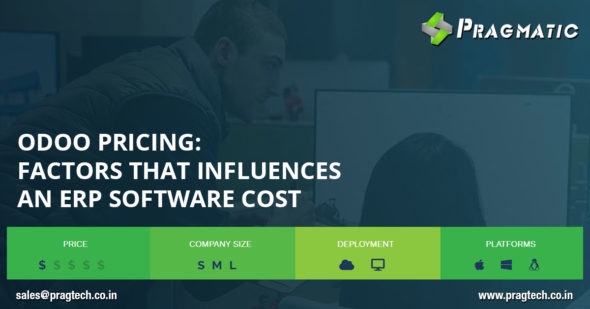 Odoo Pricing : Factors that Influences an ERP Software Cost